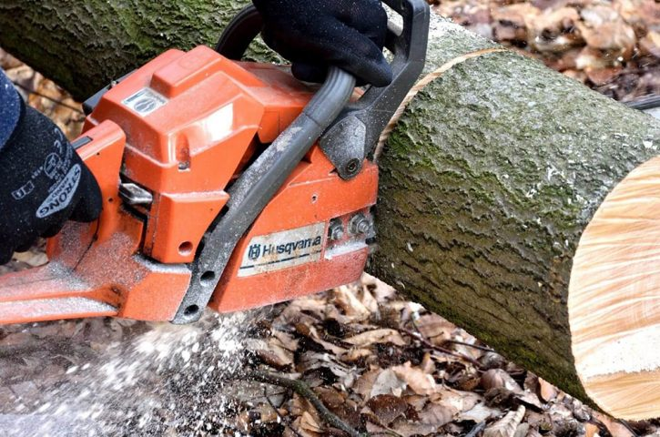 Why You Should Hire Professional Tree Removal Service